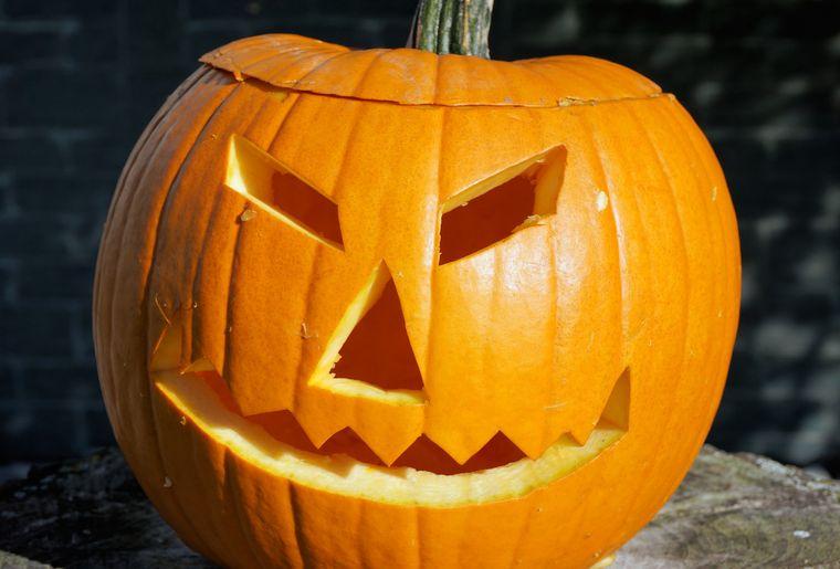 pumpkin-1747288_1920.jpg