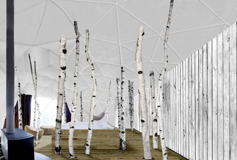 White pd Forest pod.jpg