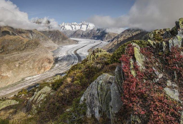 Grand glacier d'Aletsch.jpg