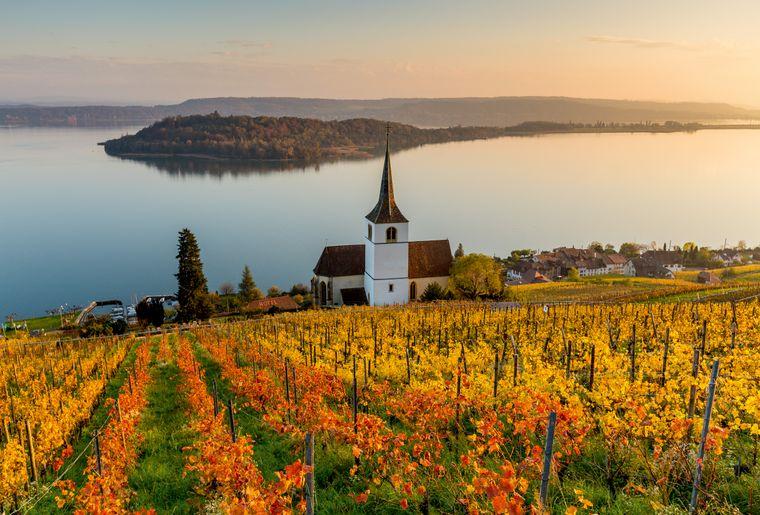 Sur les hauts du lac de Bienne © Switzerland Tourism - Jan Geerk.jpg