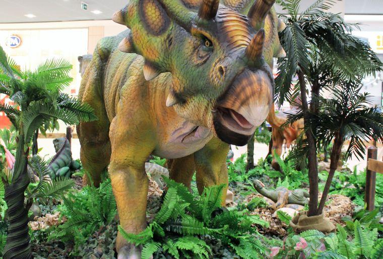 "Exposition ""Dinosauria"" - Neuchâtel"