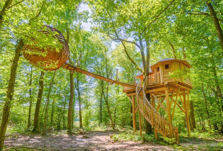 Les plus belles cabanes dans les arbres à prix d'ami !