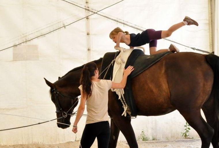 Stage d'équitation - Gland