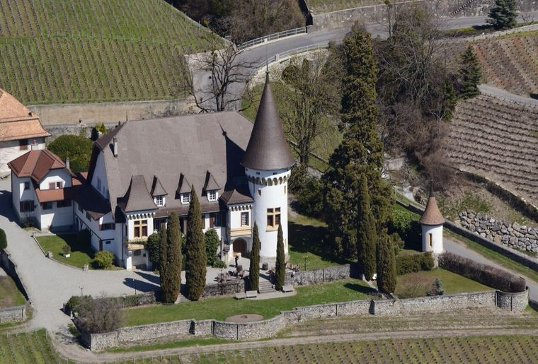Château Maison-Blanche Yvorne (2)_preview.jpeg