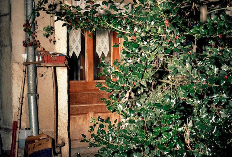 ChateauDeGruyeres_AnneGolaz_Corbeau_Porte_Houx_CopyrightAnneGolaz_Web.jpg