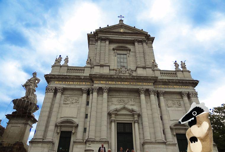 St. Ursen-Kathedrale mit Dachs.jpg