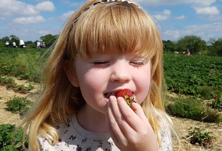 strawberry-2667496_640.jpg
