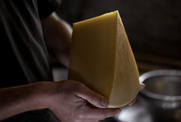 Schweizer Alpkäse präsentation käse.jpg