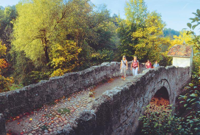 Pont Sainte-Apolline à Villars-sur-Glâne © Fribourg Région - Christof Sonderegger.jpg