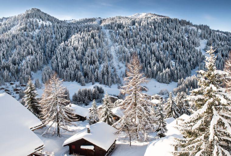 morgins-hiver-3.jpg
