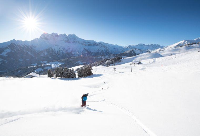 ski-champoussin-3.jpg