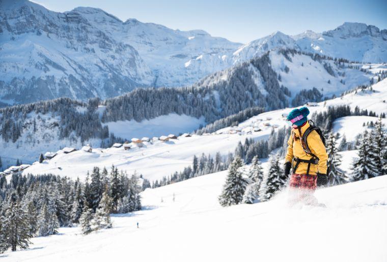 ski-champoussin.jpg