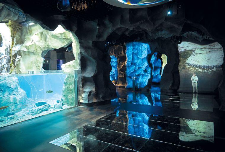 aquatis-scenographie-glace.jpg