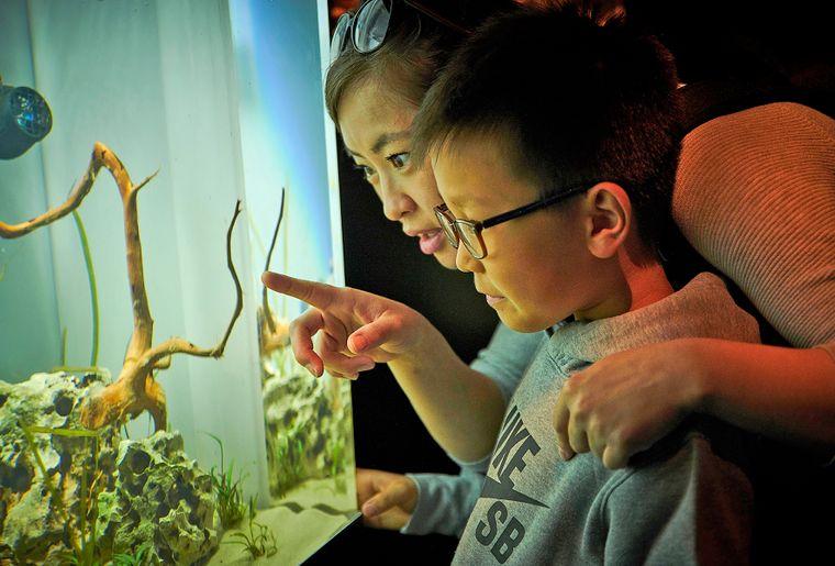 aquatis-aquarium-maman-enfant.jpg