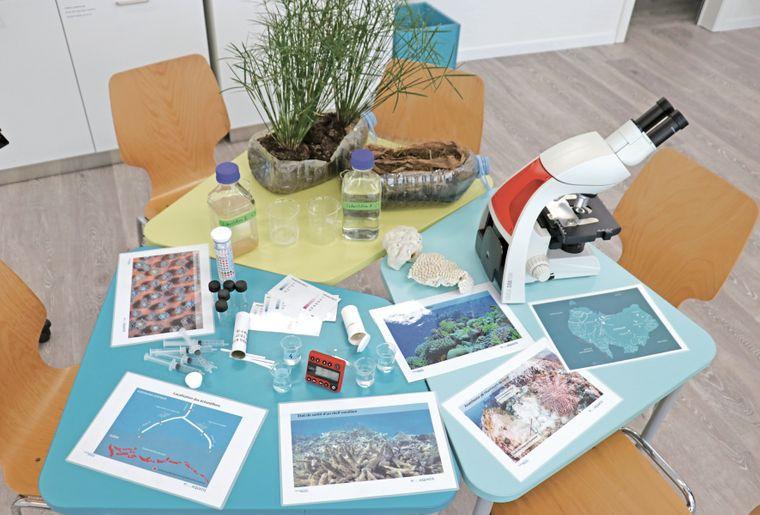 aquatis-salle-pedagogique-table-activite.jpg