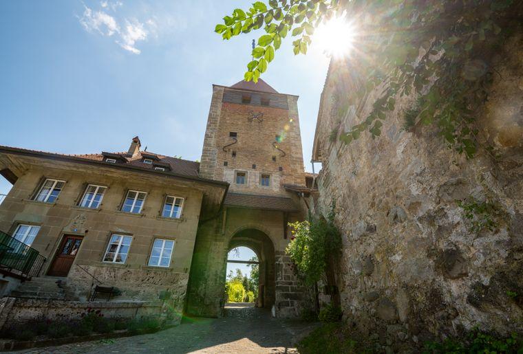 47)Fribourg_tourisme_ville (119).jpg