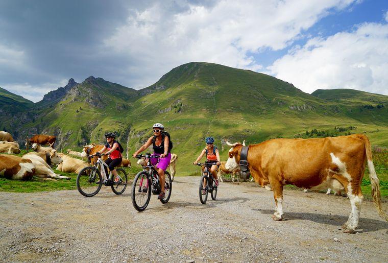 isenau-bike-e-bike-velo-electrique-vtt-diablerets.jpg