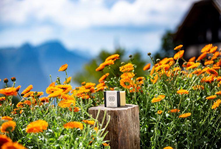jardin des monts.jpg