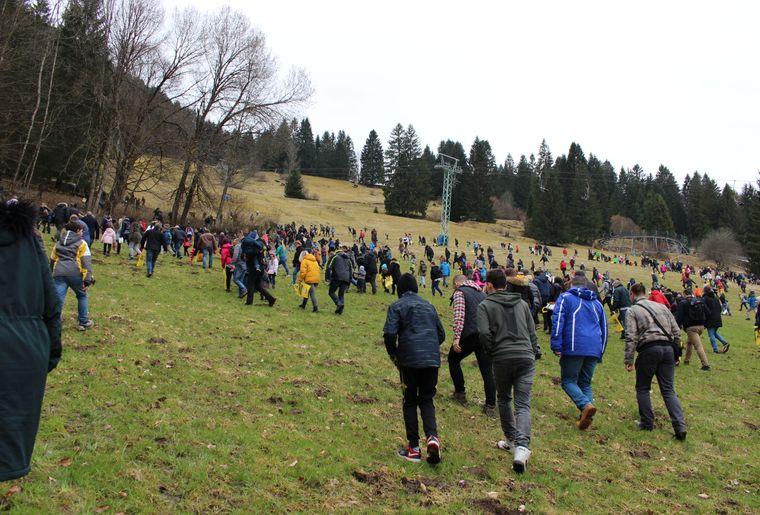 course aux oeufs TCS.JPG