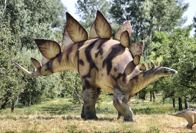 world-of-dinosaurs-3.jpg