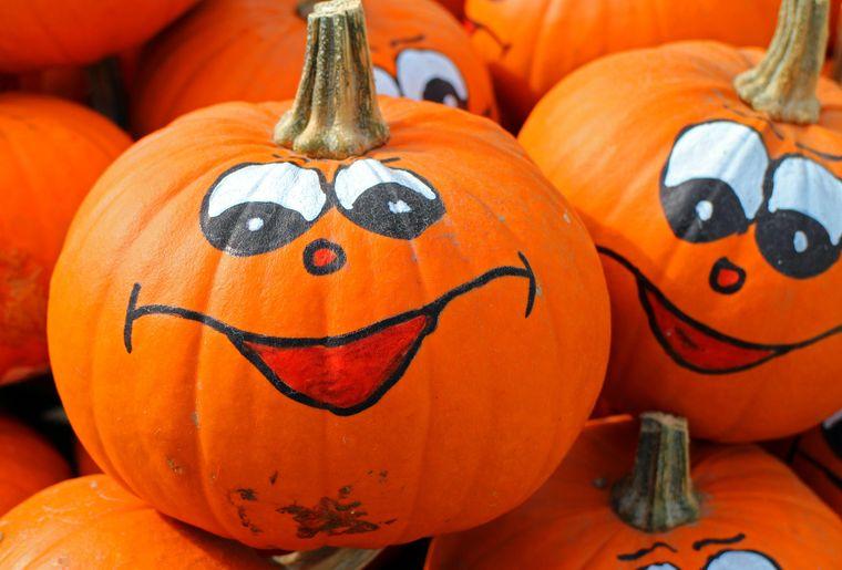 pumpkins-469641_1920.jpg