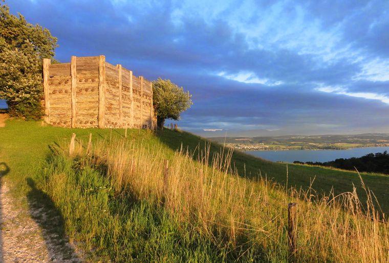 oppidum-celte-sentier-mont-vully-lac-morat-balade.JPG
