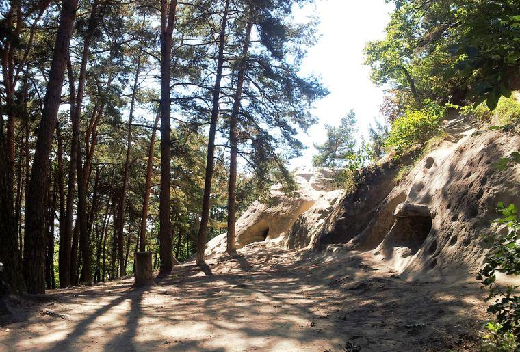 Grottes du Mont-Vully 2 © Region Murtensee.jpg