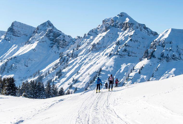 ski-rando-parc-morgins.jpg