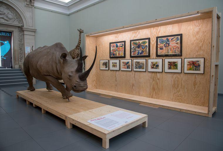 2019-10-09-Expo Rhinocéros-exposition_026.jpg