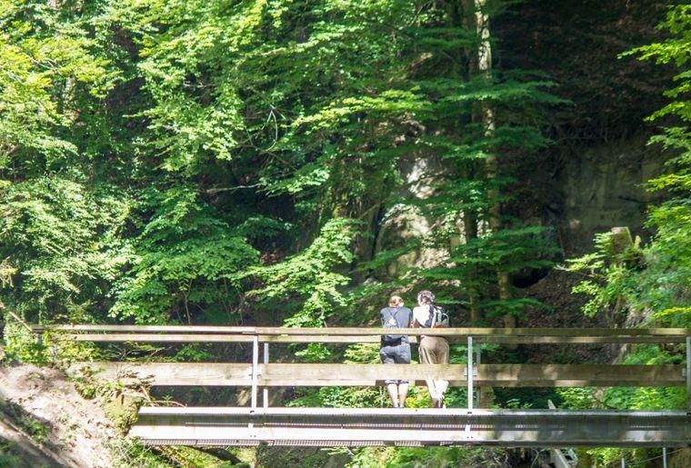 vallee-gotteron-gorges-fribourg-balade.jpg