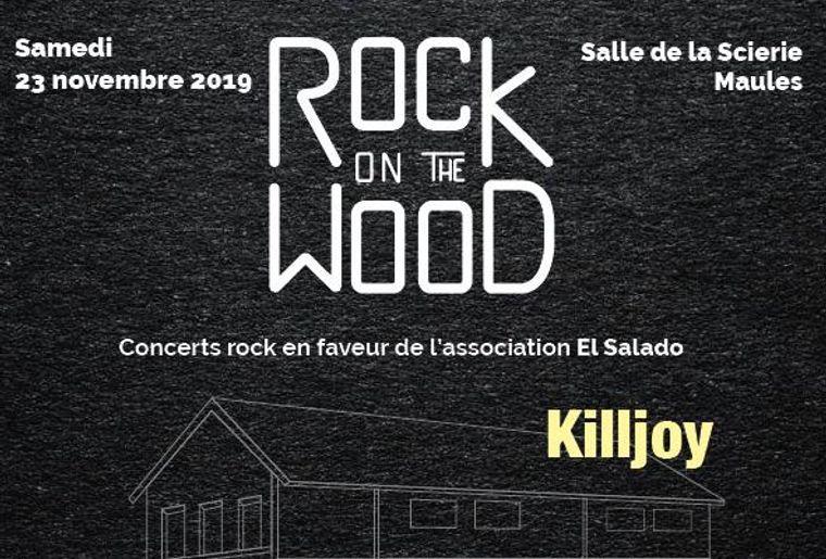 Rock on the wood.JPG