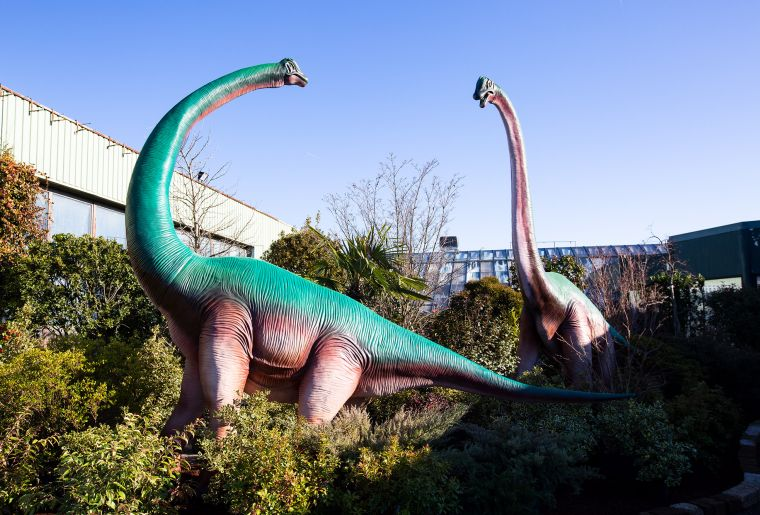 SCHILLIGER_LJD-Brachiosaures.jpg