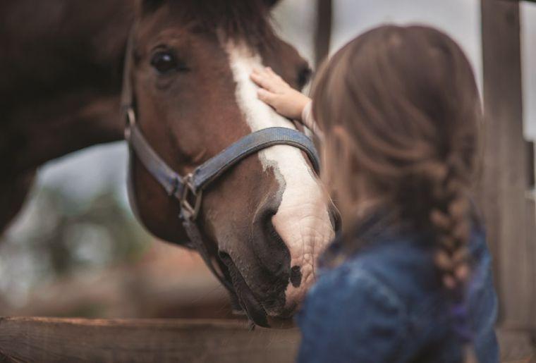 Enfant cheval (002).jpeg