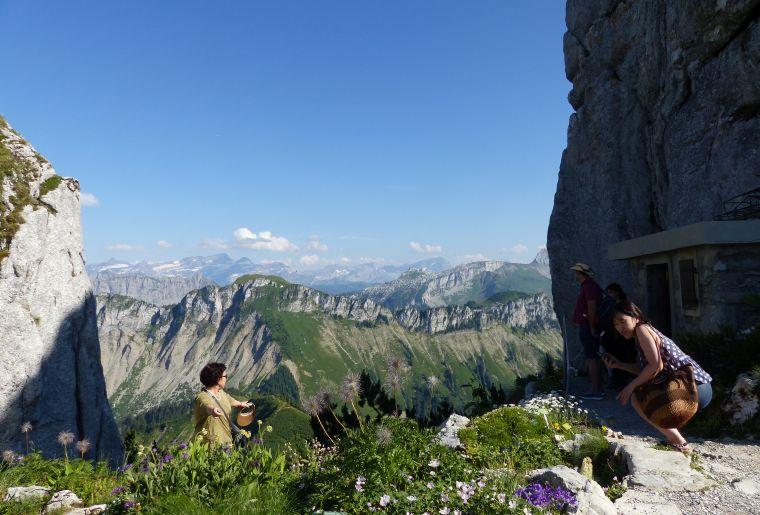 rando-panoramique-rochers-de-naye-jaman-montreux-balade.JPG