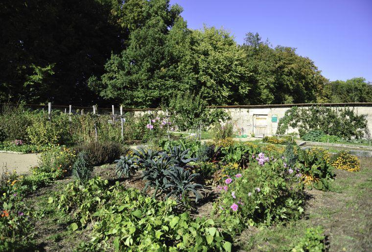 jardin_delices_cr_pro-natura.jpg