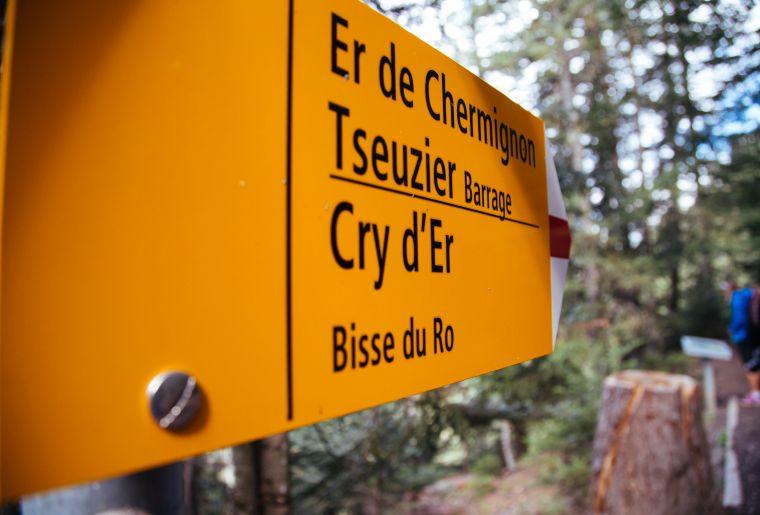 Bisse du Ro 1 © CMTC - Sébastien Rey.jpg