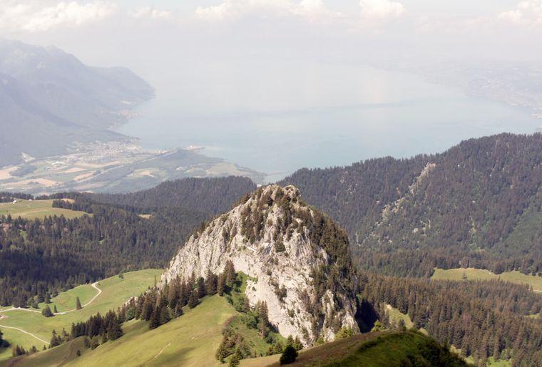 Alpage Tompey 1.jpg