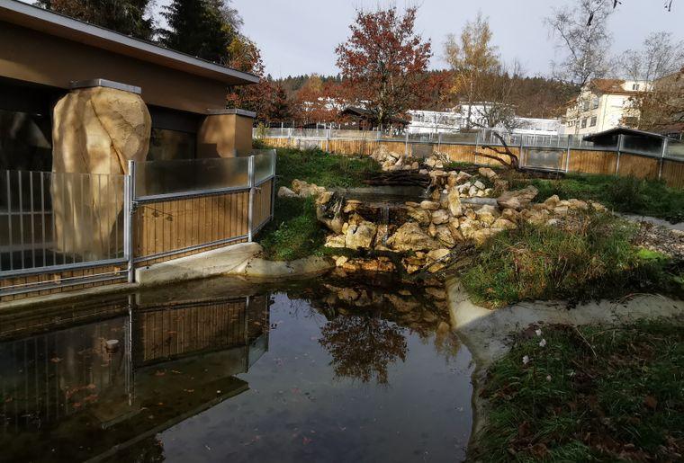 Enclos-Loutres-zoo-Bois-du-petit-chateau