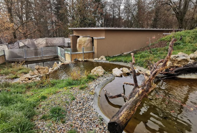 Enclos-Loutres-zoo-Bois-du-petit-chateau2