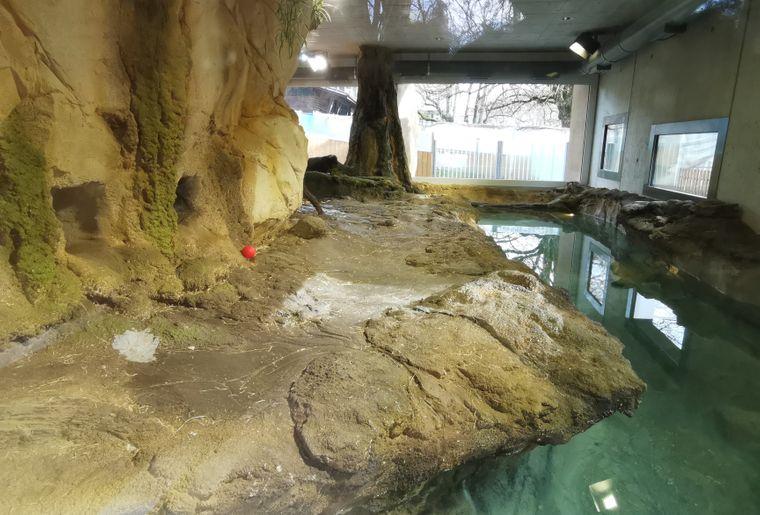 Enclos-Loutres-zoo-Bois-du-petit-chateau3