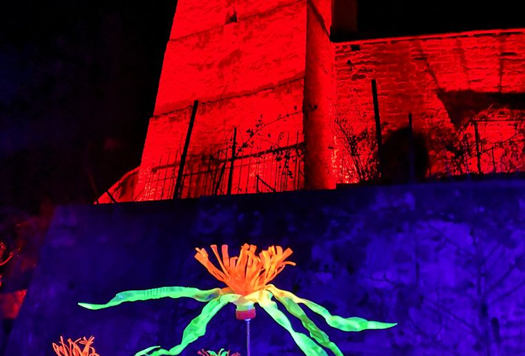 morat-lumiere-festival-balade.jpg