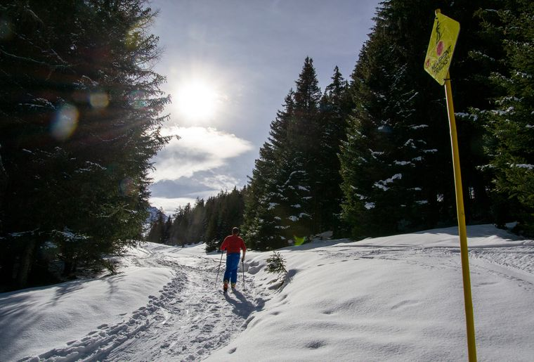 rando-parc-vicheres-ski-pays-st-bernad-3.jpg