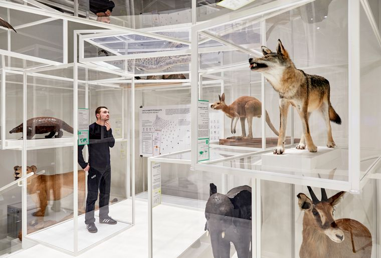 2020_Museum_Sauvage 53.jpg