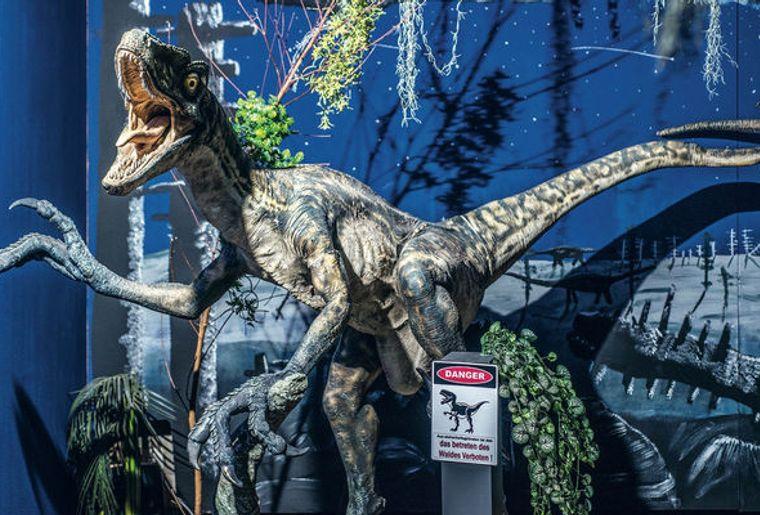 sauriermuseum-musee-dinosaure-bellach-soleure.jpg