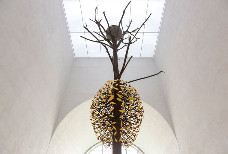 L'arbre-Guiseppe-Penone