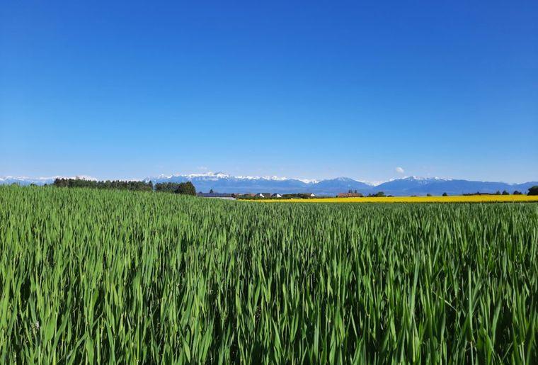 agriculture-durable-circuit-du-paysan-1024x768.jpg