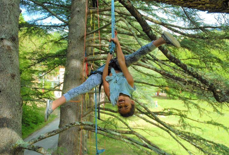 cime-grimpe-arbre-fille