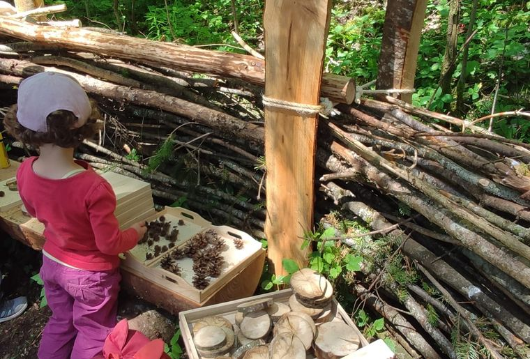 canape-forestier-activites