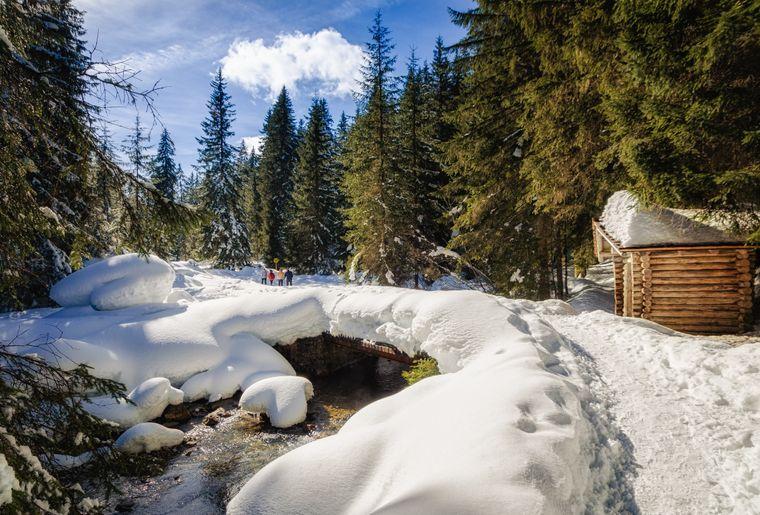 vallon-de-they-hiver_cp-andrea-pelizzo.jpg