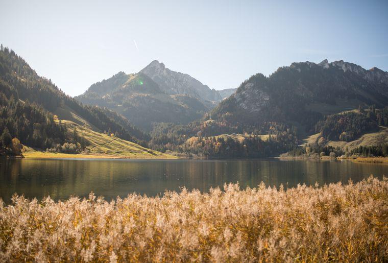 lac-noir-schwarzsee-automne.jpg